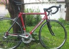 Steppenwolf Prisma SL Custom Made Rennrad Allround