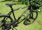 RED BULL Al 100 Factory Hardtail Allgemein