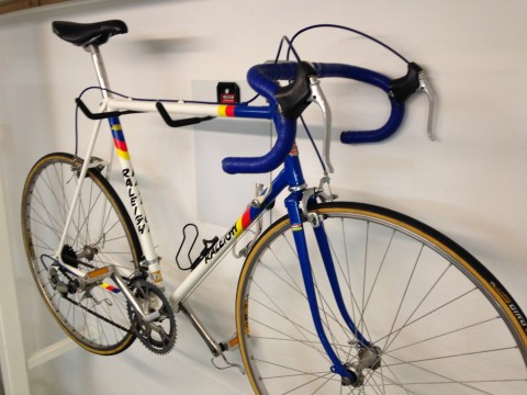 Raleigh Team Panasonic Replica Rennrad Komfort